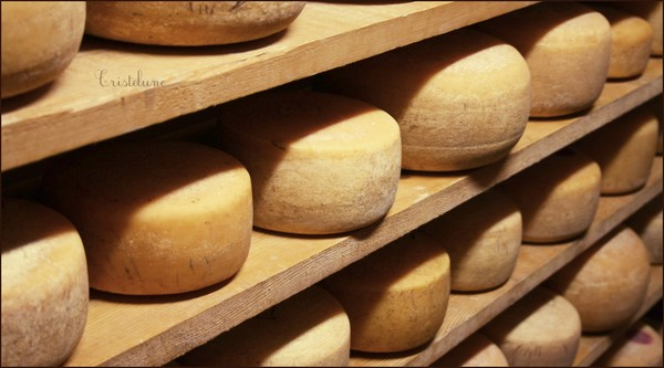 http://anicroche.cowblog.fr/images/Photos/fromage.jpg