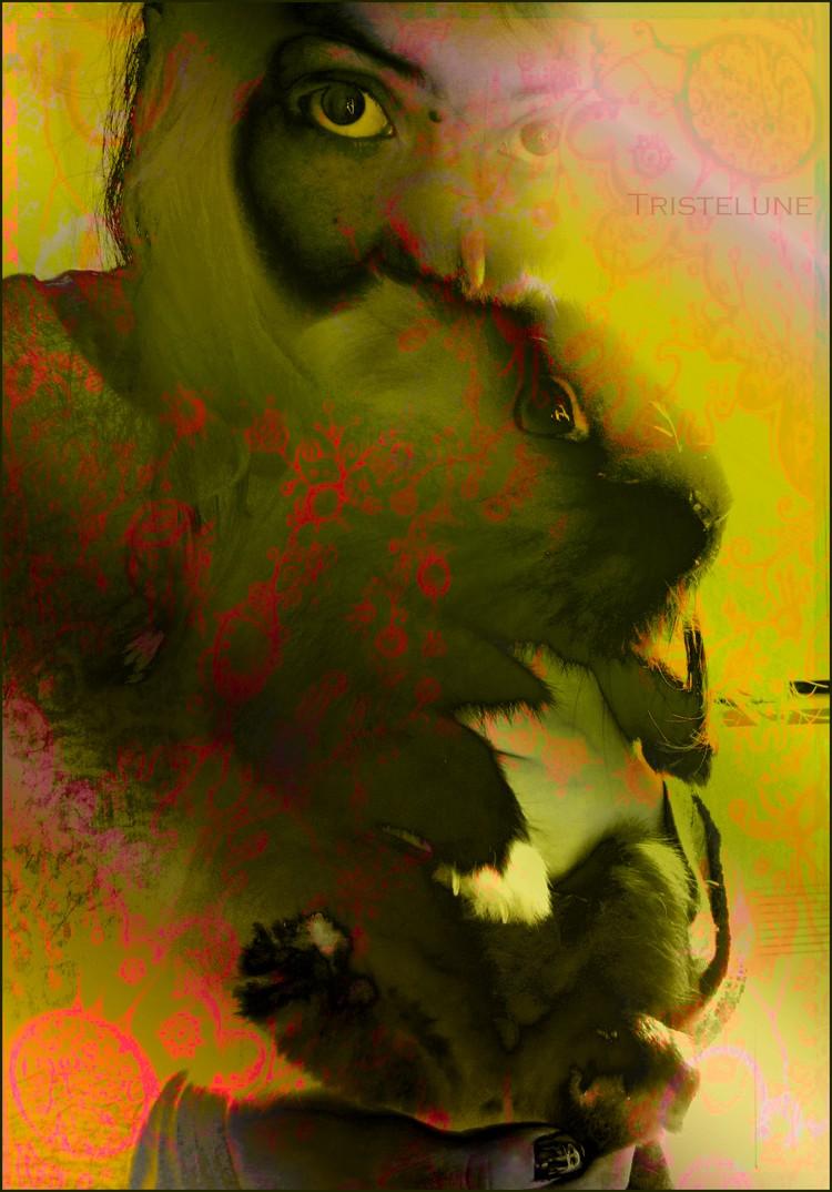 http://anicroche.cowblog.fr/images/pouetmoiptt.jpg