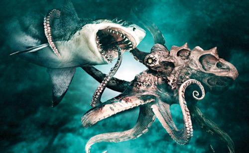 http://anicroche.cowblog.fr/images/sharkoctopus.jpg
